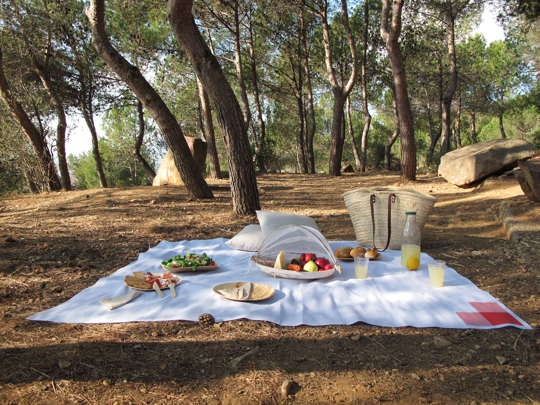 Picnic Barcelona | We deliver amazing picnics in the best spots! on